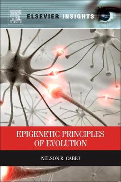 Epigenetic Principles of Evolution