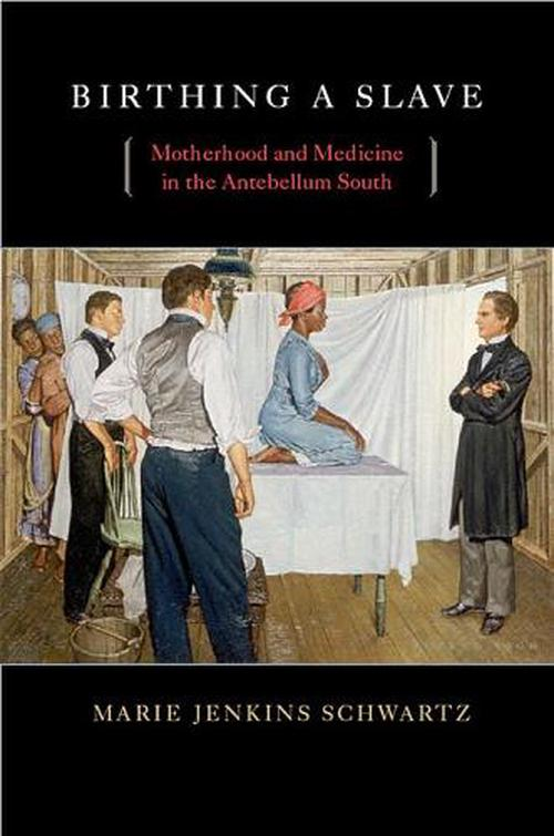 Birthing a Slave: Motherhood and Medicine in the Antebellum South