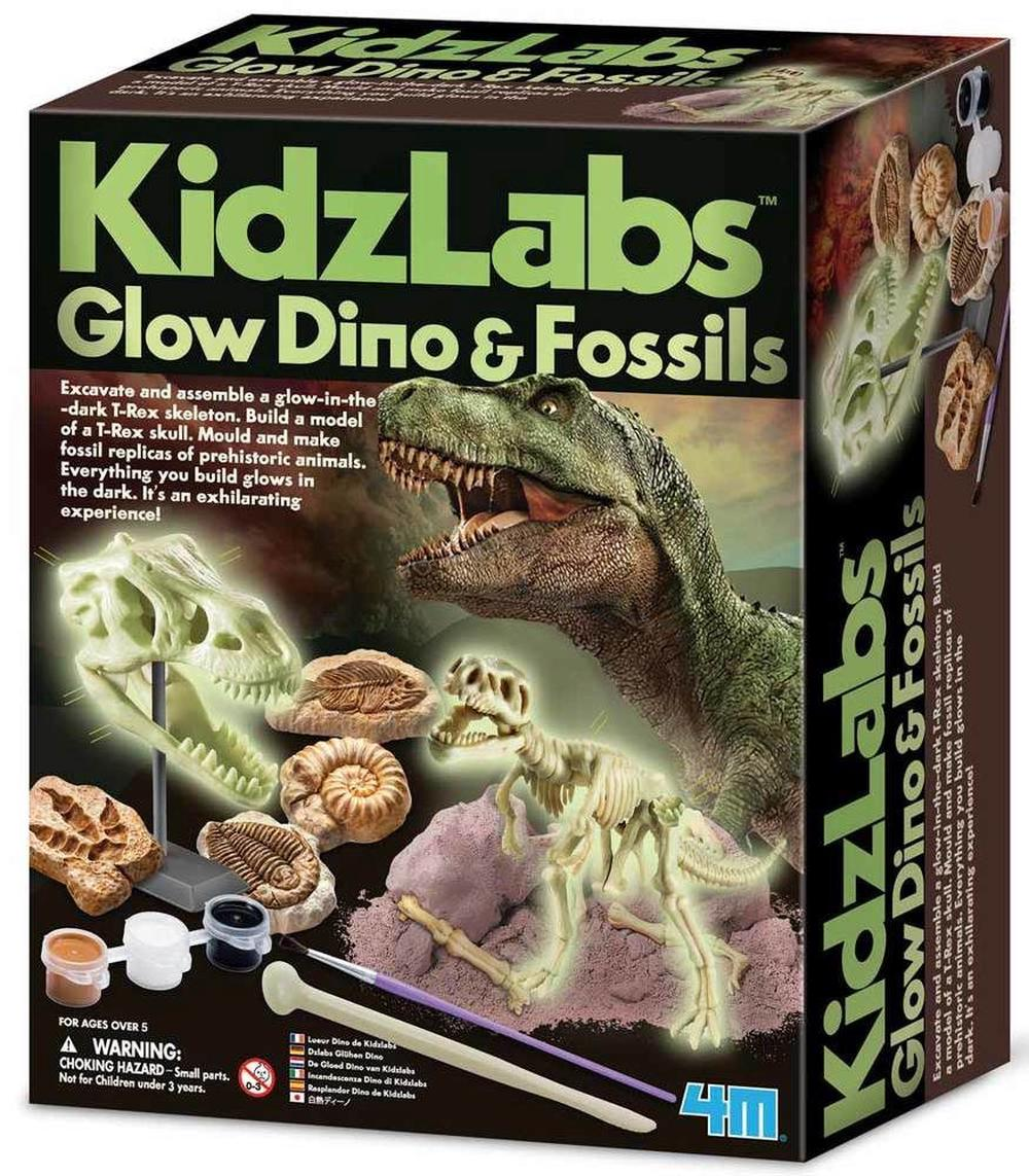 4M Kidz Labs - Glow Dino And Fossils Kit