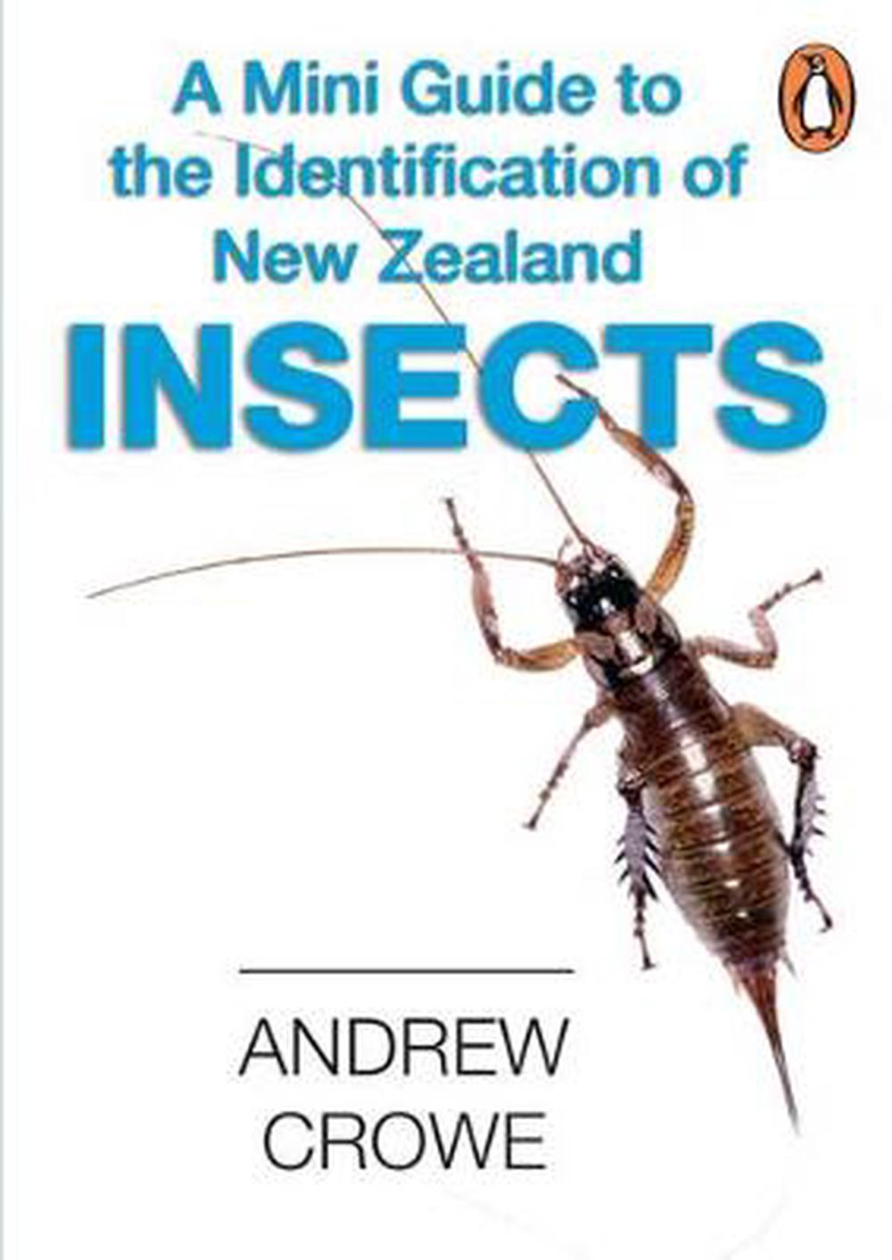 Mini Guide to Insects