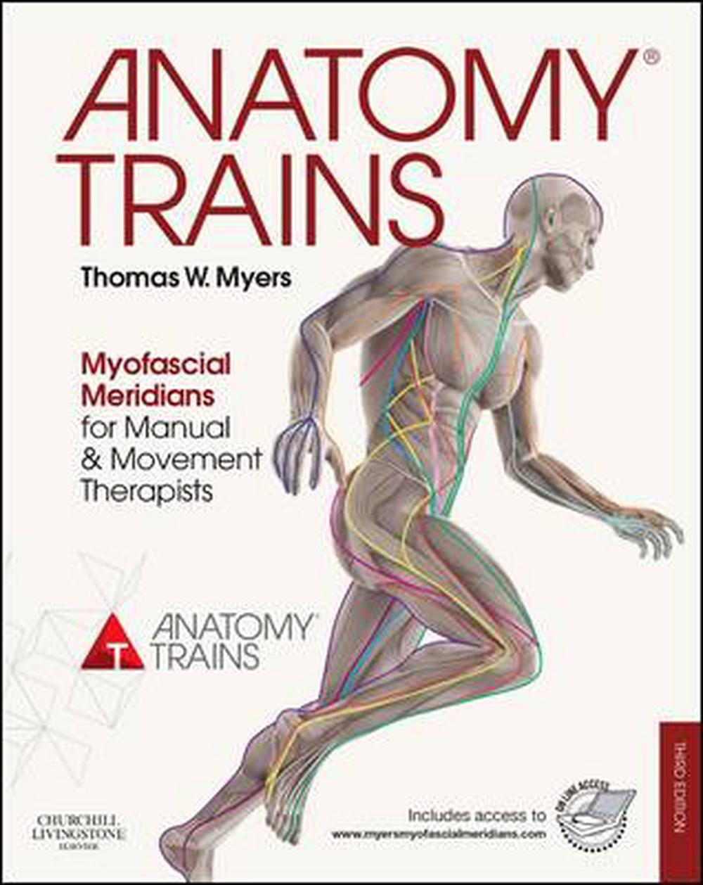 Anatomy Trains by Thomas W. Myers, Paperback, 9780702046544 | Buy ...