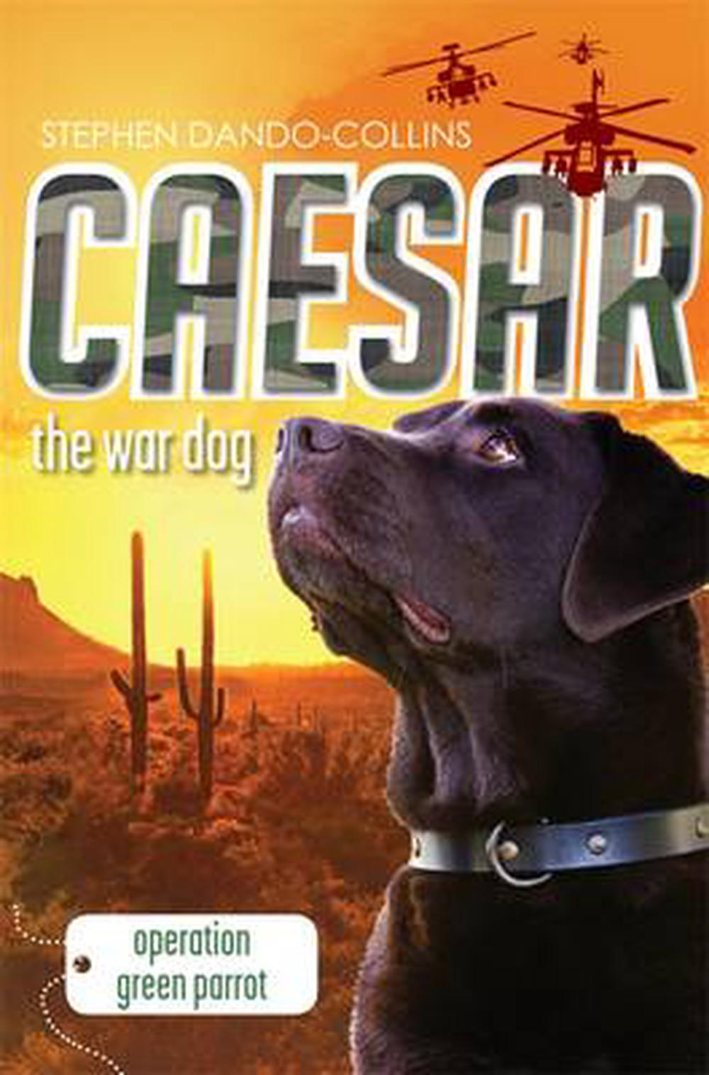 Caesar the War Dog 4