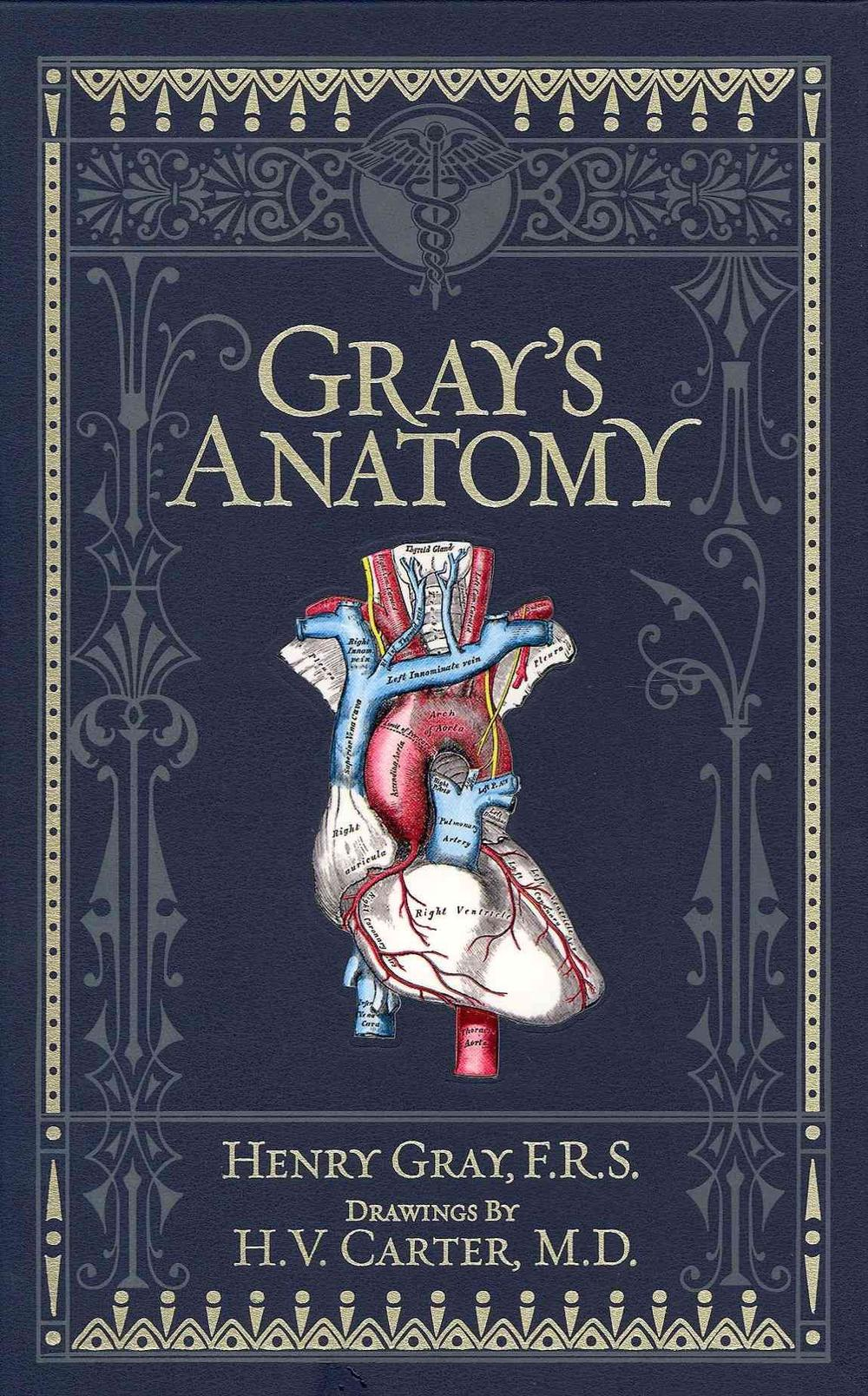 Gray\'s Anatomy by Henry Gray, Hardcover, 9781435114937 | Buy online ...