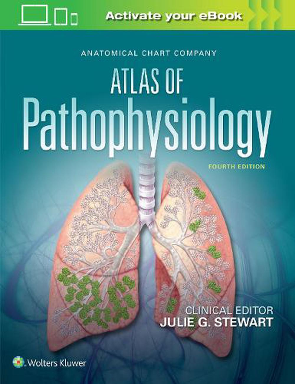 Anatomical Chart Company Atlas Of Pathophysiology By Julie Stewart