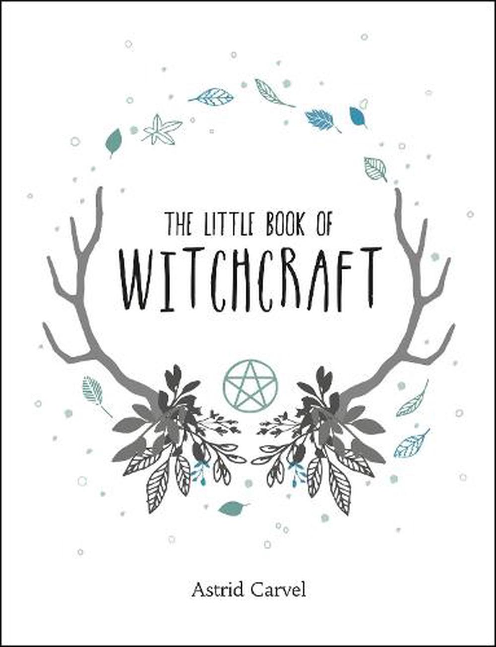 Image result for the little book of witchcraft