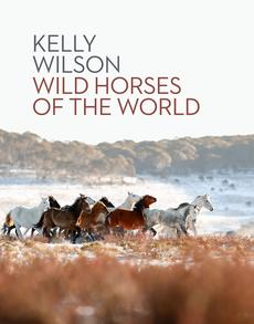 Wild Horses of the World