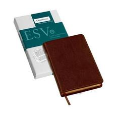 ESV Pitt Minion Reference Bible, Brown Calf Split Leather, Red-letter Text, ES444:XR
