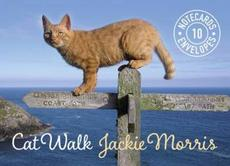 Cat Walk Notecards: 10 Cards and Envelopes